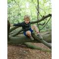 Seb climbing trees