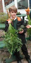 Our harvest of squashes and carrots - Oct 15