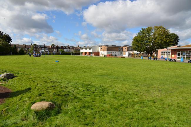 Field (looking towards Midhurst Road)
