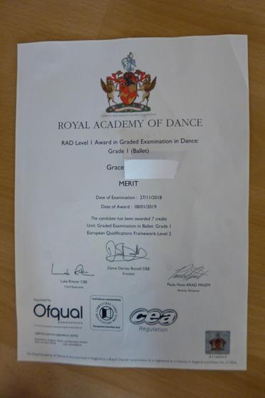 Grade 1 Pass with Merit