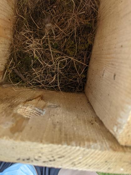 Another box with a nest.
