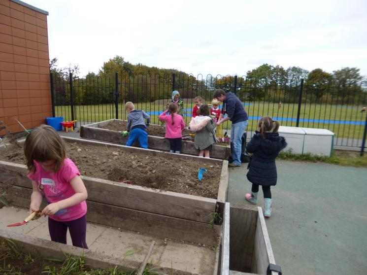 Weeding the KS1 raised beds.