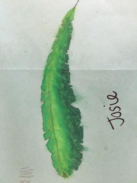 Josie's finished leaf