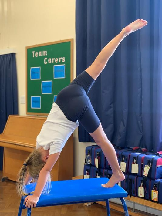 'Steps to Success' for our gymnastics lesson included....