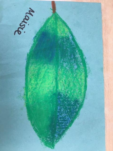Maisie's finished leaf