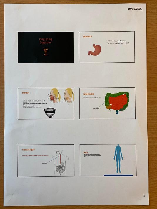 Stan designed a powerpoint to show his digestion learning