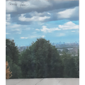 View from Alexandra Palace by Emine
