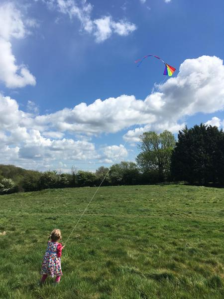 Poppy learns to fly a kite!