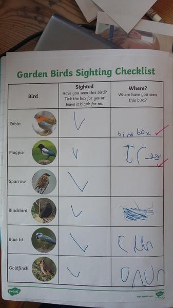 Martha does some garden bird-watching!