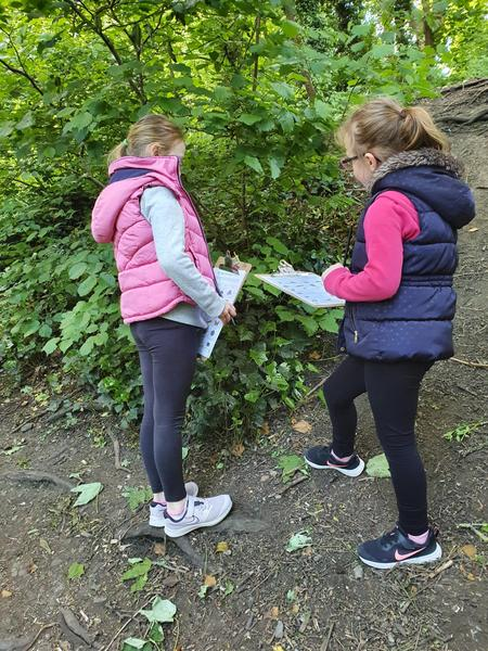 Ava and her sister have a nature hunt.