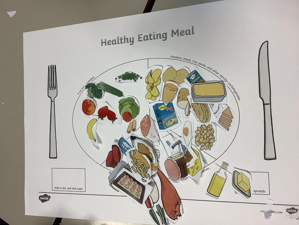 We identified food groups and created balanced meals.