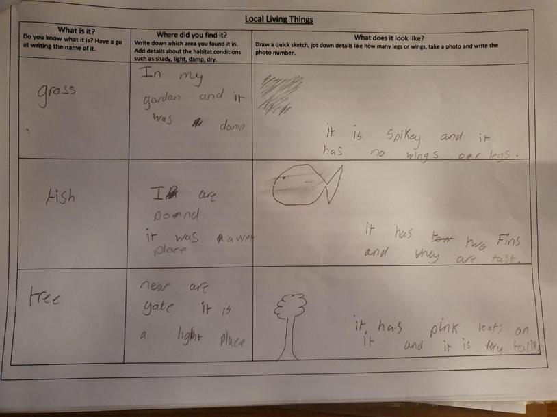 Fraser's nature survey