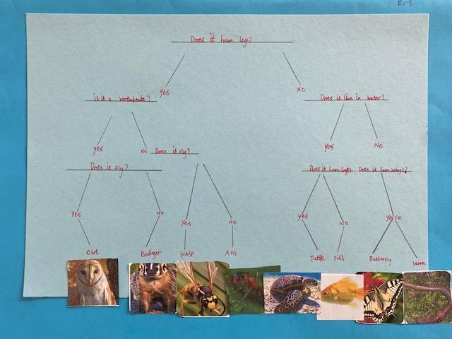 Evie's branching database