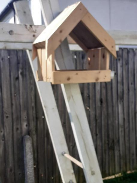 Mollie's home built bird house!