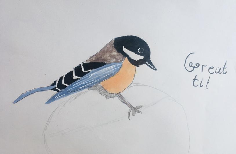 Nina's beautiful bird