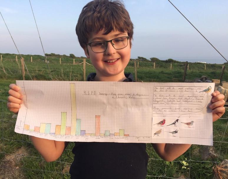 Oscar's Bird survey graph