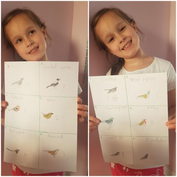 Maya's brilliant birds
