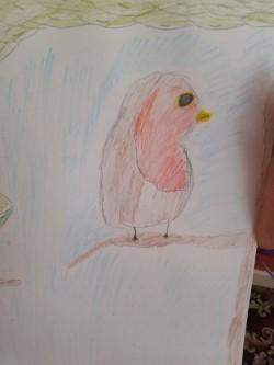 Eleanor's fantastic robin