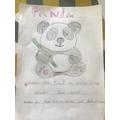 Super panda facts Toby!