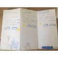 Ellis write a diary