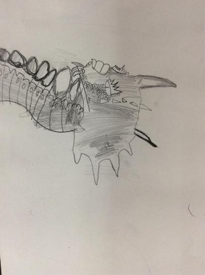Observational drawing 1