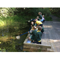 Pond dipping on our Heathland