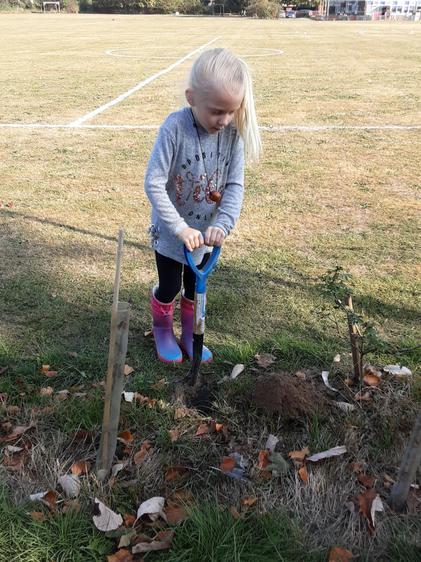 Digging to plant some of our new trees