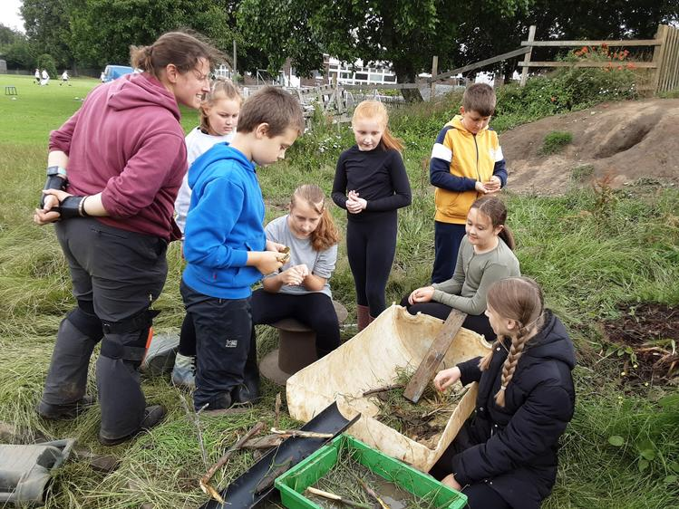 Creating a frog habitat