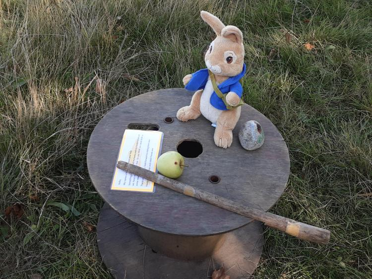 Building new homes for Peter Rabbit & his friends