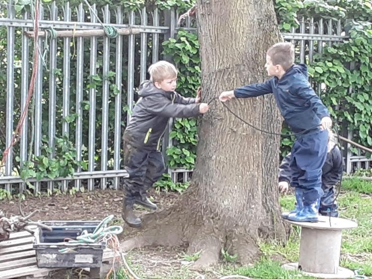 Teamwork, tying up the tree