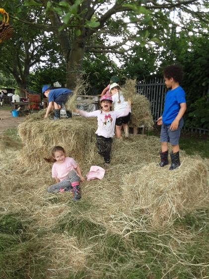 Fun in the hay