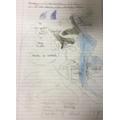 Map Skills (Y3)