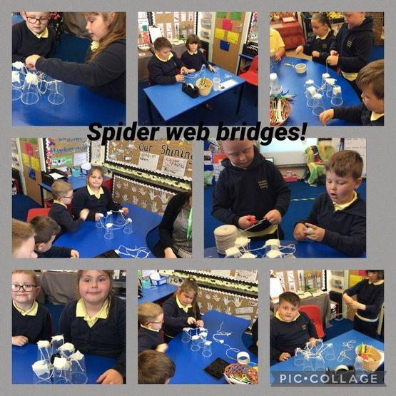 Making spider web bridges STEM