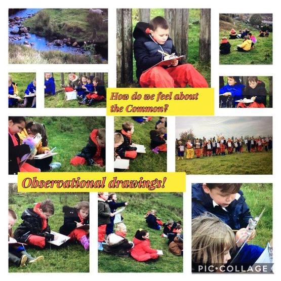 Dosbarth Cardiff making observational drawings of the common