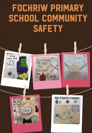 Fabulous posters from our pupils