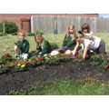 Gardening Club planting plants.