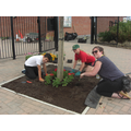 Working together to create a welcoming entrance.