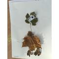 Leaf man!