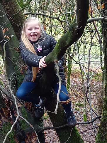Jessica climbing a tree.