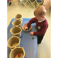 Counting bears into Buckets!