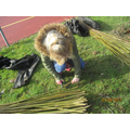 Becki is cutting up the willow for the dome....