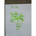 Lovely drawing Teja