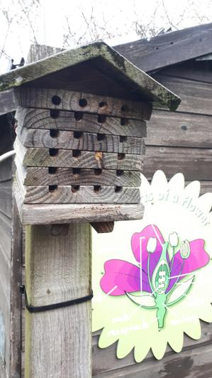 Our Bee Hotel in situ.