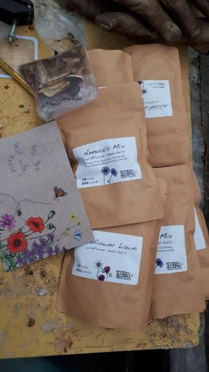 More seeds ready for planting