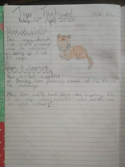 Mia's super tiger report!