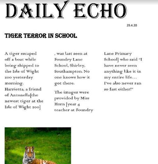 Barney's tiger report
