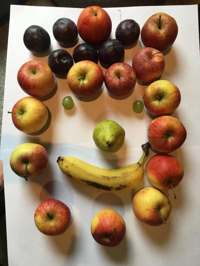 Jayden's fruit picture