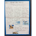 Polar Bear Fact File - Y2
