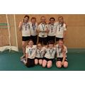 Girls Cricket Team- Hampshire Schools Winners!