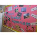 Our trip to the Aquarium